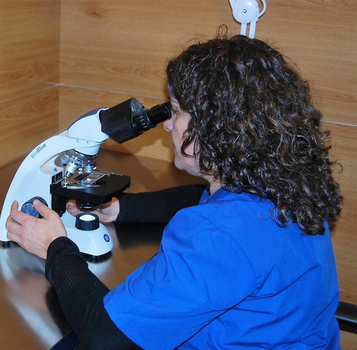 Analísis clínicos en la clínica veterinaria la Vinyala en Sant Vicenç dels Horts